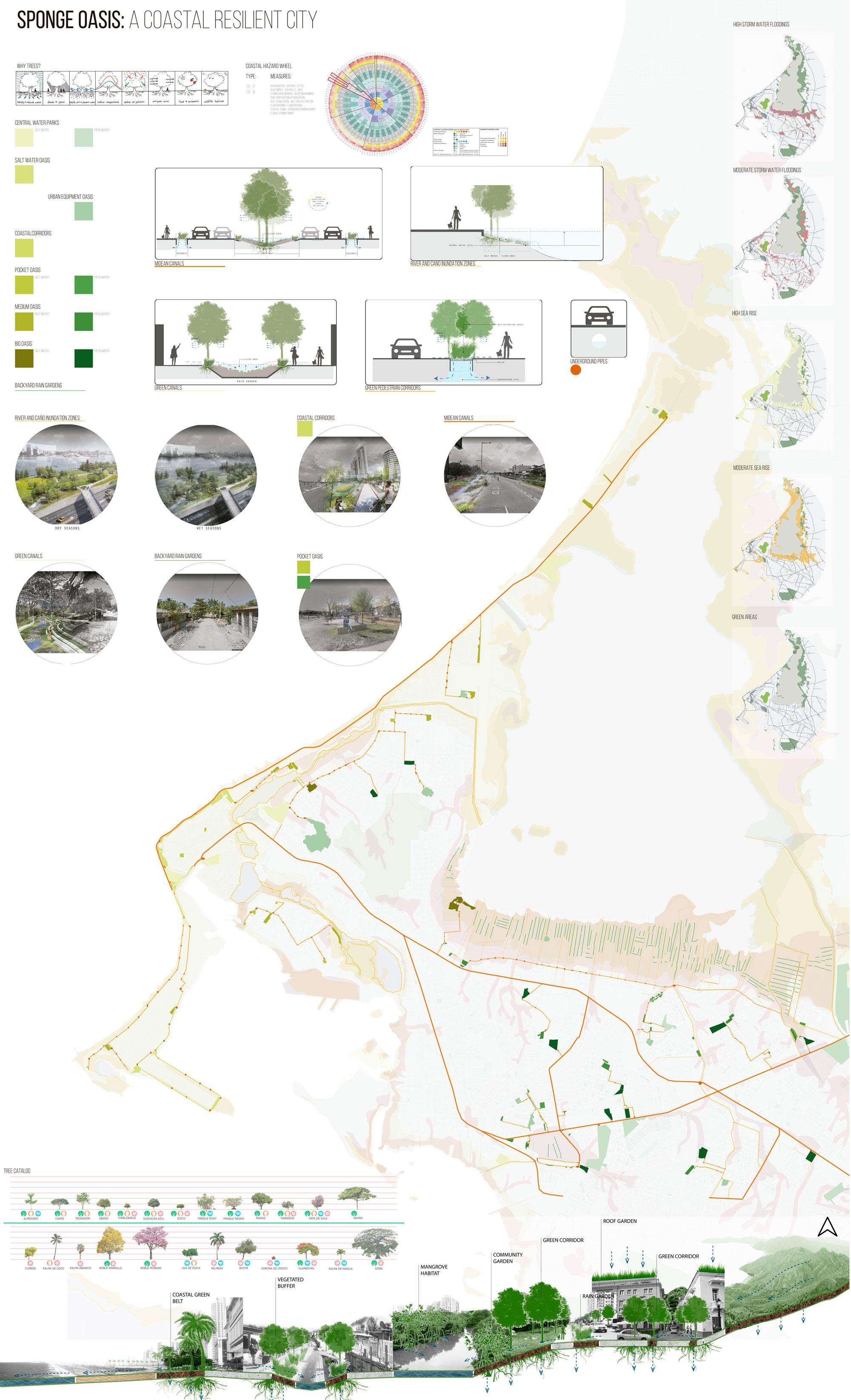 Sponge Oasis: A Coastal Resilient City